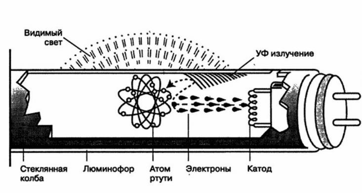Конструкция лампы