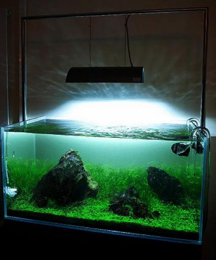 Металлгалогенные лампы