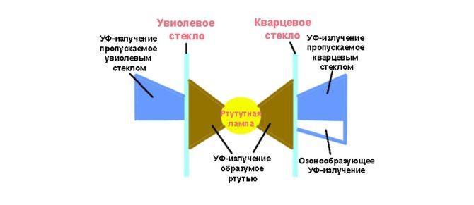В чём разница между ультрафиолетовой и кварцевой лампами