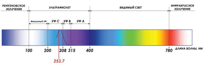 Диаграмма восприятия ультрафиолета