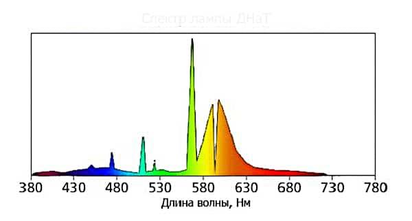 Спектр ДНаТ