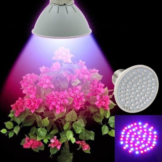 Светодиодная лампа для выращивания