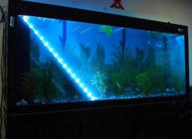 светодиодная лента в аквариуме